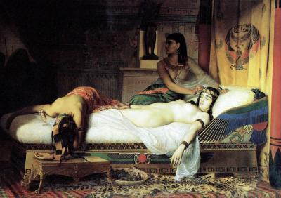 Conspiracions assassinats i usurpacions la història negra dels faraons