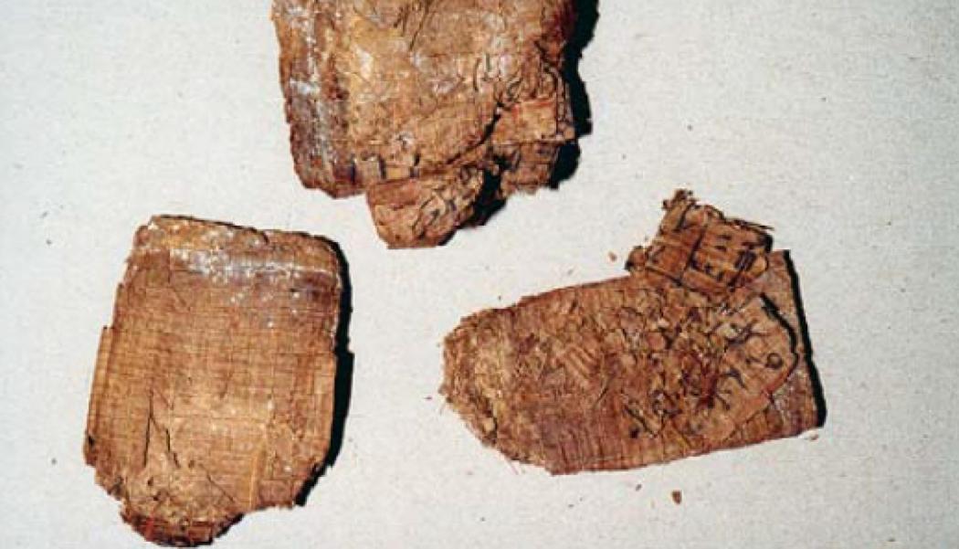 papiro Dama Bary 0