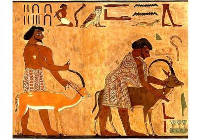 Curs_Online_Museu_Egipci_de_Barcelona_Asiàtics_Regne_Mitjà