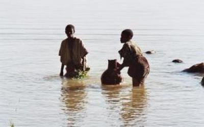 La mirada etnogràfica: Maasai, Borana i Shilluk