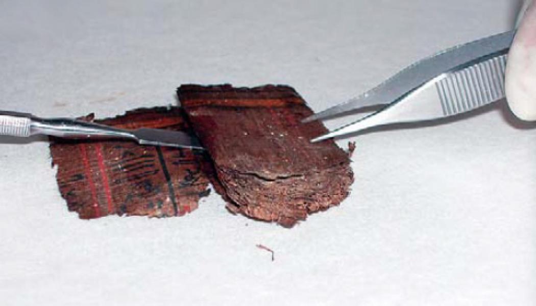 Papiro Dama Bary 3