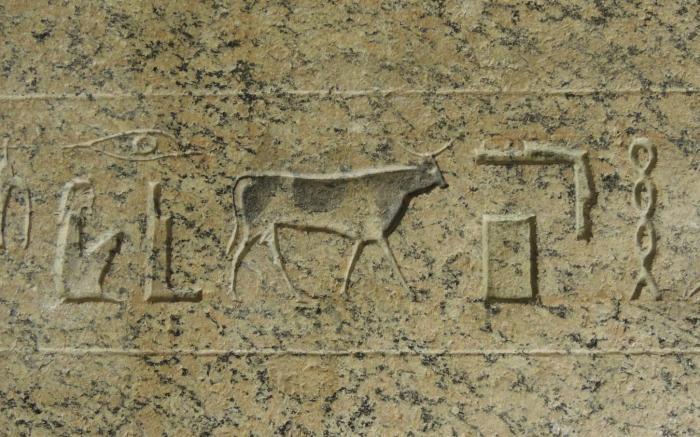 Conferència Museu Egipci de Barcelona