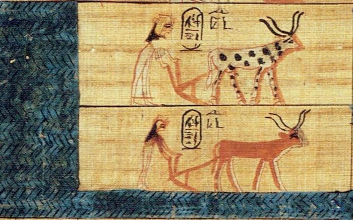 L'aigua a l'antic Egipte