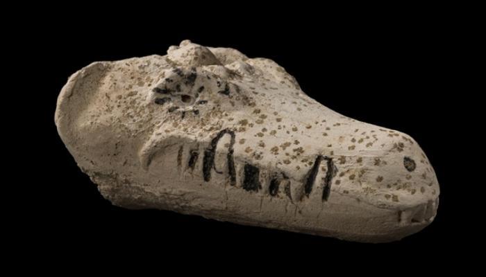 màscara cocodril